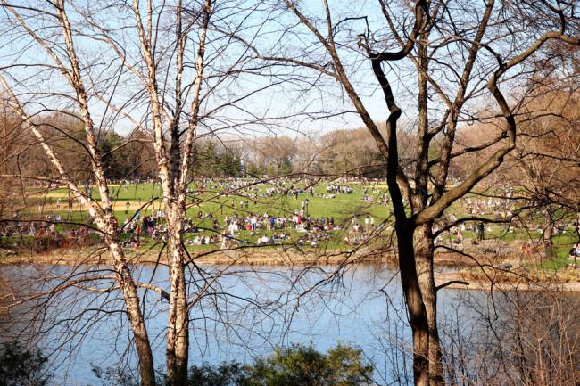 New York Central Park / https://www.fanfarella.at/travel-diary-new-york-new-york